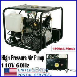 4500PSI Electric Air Compressor High Pressure Pump Scuba Diving Auto Stop 110V